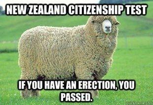 New Zealand (NZ) citizenship test.  Sheep fuckers.  #straya #strayacunt