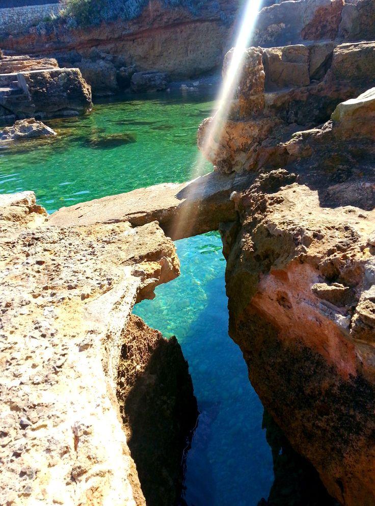 Cocodrilo Bay, Alcudia,Mallorca