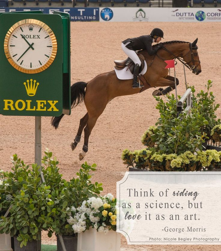 Equine jumper - Equestrian Experience by Nicole Begley Photography - george morris - quote -horse