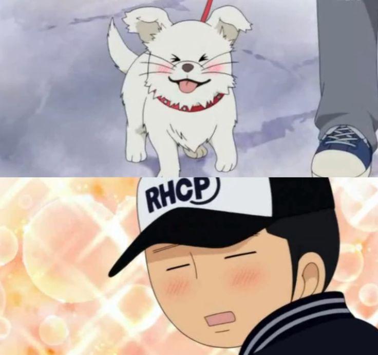 Kimi ni Todoke >Ryu and Maru<