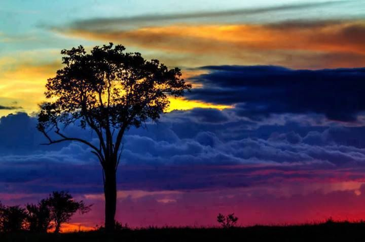 Colombia Llanos Orientales - Colores del atardecer (colores de la bandera)