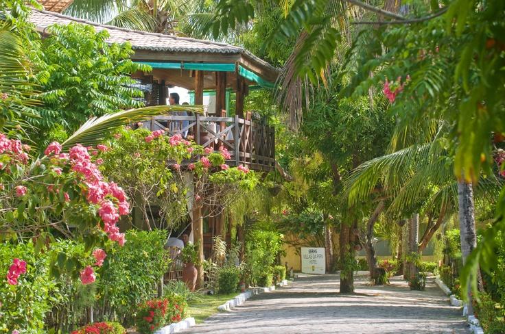 En el complejo de Serhs Villas da Pipa Hotel encontrará una privacidad como si estuviera en su propia casa, con el añadido de poder solicitar los servicios más selectos del hotel si así lo desea.