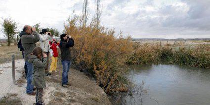 Ecoturismo: en busca de una marca de excelencia Observación de aves en la laguna de El Oso (Ávila). EFE/RAÚL SANCHIDRIÁN