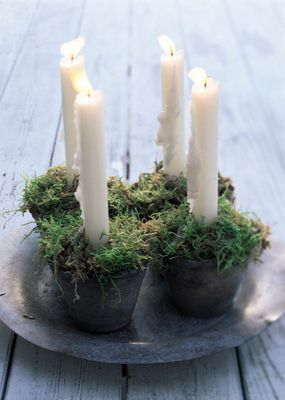 candles and moss