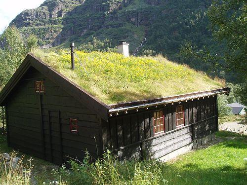 Hytte Roof - Aurlandsdalen - Norway