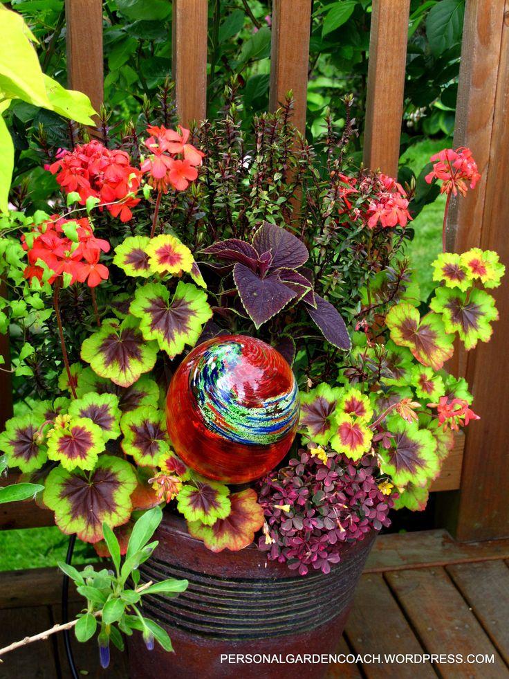 heatherbradley u0026 39 s beautiful  garden  container  foliage