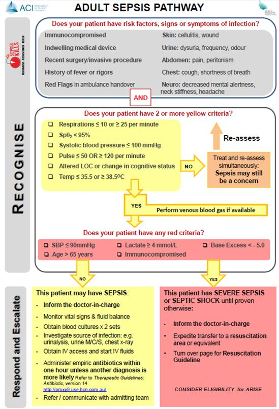 Adult Sepsis Pathway