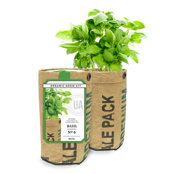 Basil Grow Kit by the Urban Agriculture Company