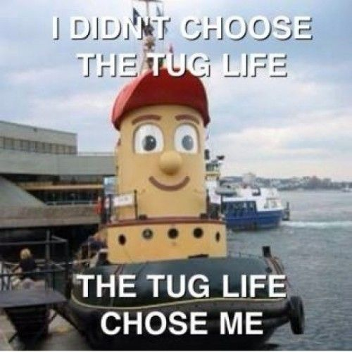 Tug Life: Hard Knock, Tugboat, Funny Stuff, Funnies, Tuglife, Photo, Tug Life, Knock Life