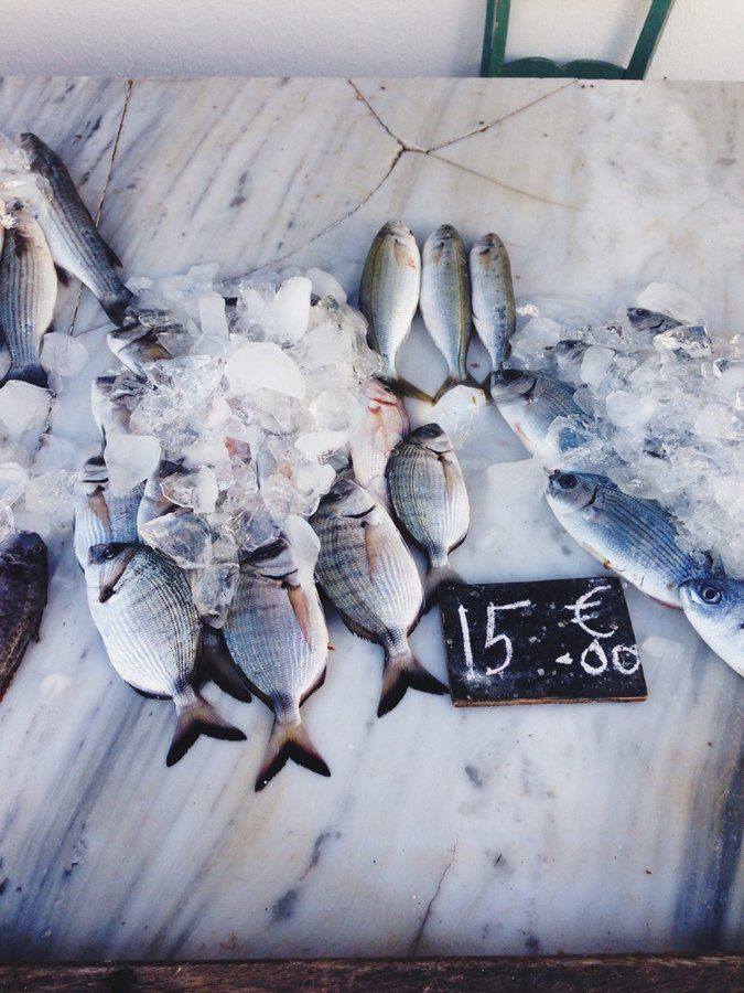 Fish Market | My Vacation Guide to Spetses, Greece: The Perfect Affordable Weekend in the Greek Isles