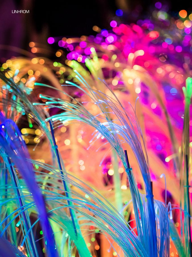 30 Captivating Photos with Vivid Colors « Stockvault.net Blog – Design and Photography