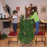 """#Concorso #GreenMarathonTappa 5 #Natale #Green Arrigo: """"albero artificiale montato dai figli= salvaguardia natura + impegno per i pupi (con la speranza che si stanchino)"""""""