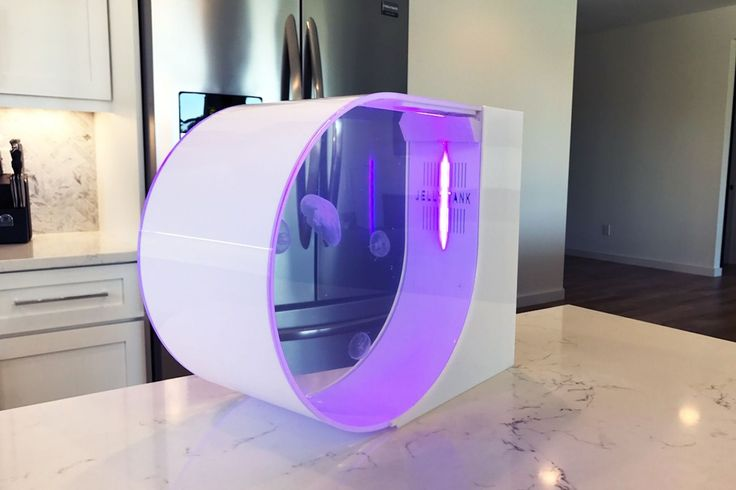 Futuristické akvárium pre medúzy