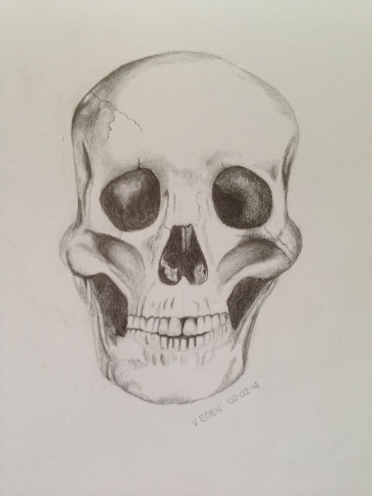 First attempt at a skull