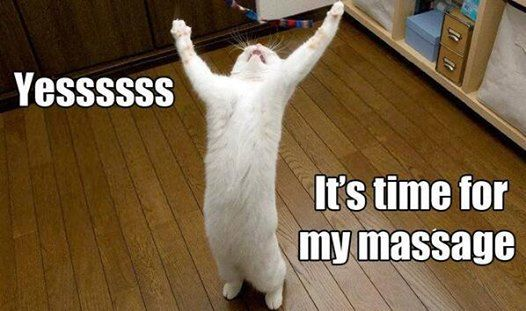 Pretty much how everyone feels when it's time for their massage!  Come to Pressure Point Massage Therapy in Southfield, MI for a FANTASTIC massage!  Call us NOW at (248) 358-8800 to book your appointment!  Feel free to visit our website www.pressurepointmassagetherapy.com for more information!