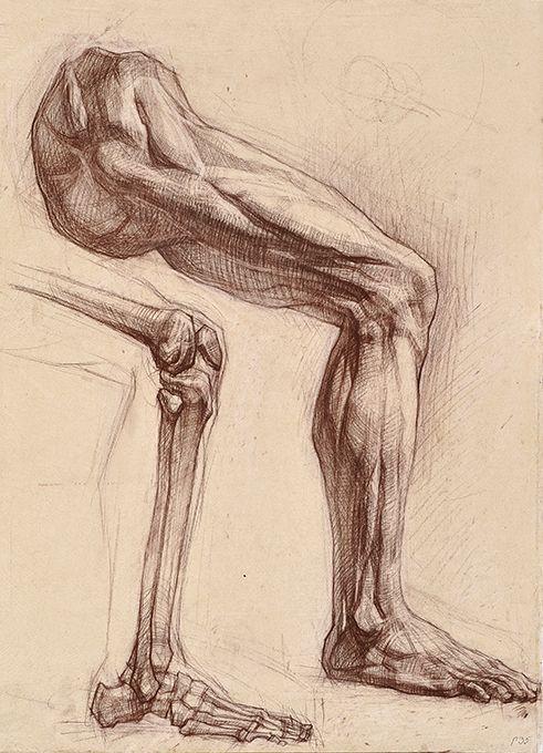 Hình vẽ nghiên cứu giải phẫu của sinh viên Nga - Draw