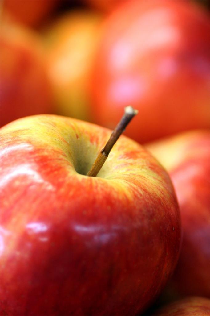 Tips Alami Perawatan kulit menggunakan apel mungkin bisa anda coba. Apel selain bermanfaat untuk dikonsumsi ternyata bisa bermanfaat juga untuk perawatan wajah, seperti untuk merawat kulit kusam, untuk perawatan wajah yang keriput. Baca juga TIPS perawatan kulit alami lainnya di Perawatan-kulit.com