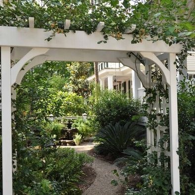 Arbor with climbing roses