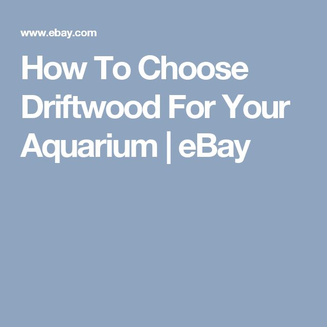 How To Choose Driftwood For Your Aquarium | eBay
