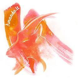 capricornolemento : La terra Pianeta che lo governa : Saturno Colore : L'arancione Pietra : Ambra Anatomia : Le costole Profumo : Caprifoglio  Il fiore : Margherita Piante e Fiori della fortuna : Amapola nera, Amapola