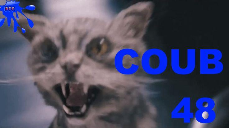 Лучшее видео COUB за июнь 2016 Best Coub за неделю Выпуск 48