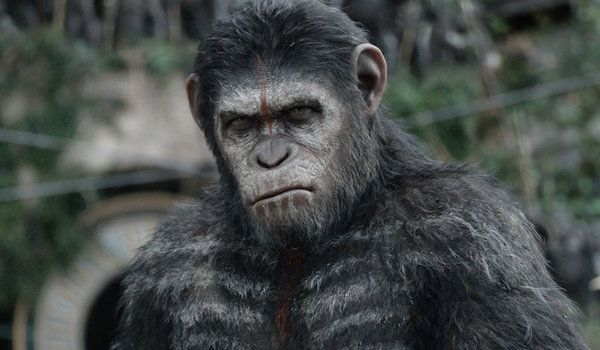 6 Things To Remember Before Seeing War For The Planet Of The Apes