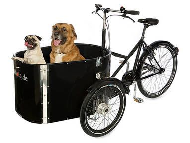 Dog - a cargo bike for doglovers, cutest thing  ever