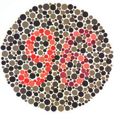 Ishihara Plate 25 of 38