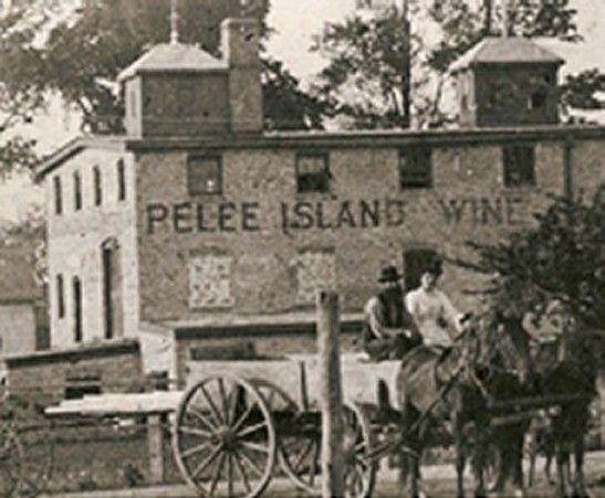 Back When - Pelee Island Winery.
