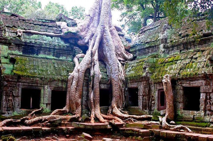 Foto: Ta Prohm Temple, Jungle temple, Cambodia  Buongiorno e Buon Fine Settimana Community !!  Ta Prohm è il nome moderno di un tempio di Angkor, in Cambogia, costruito nello stile Bayon principalmente nel tardo 12° secolo e all'inizio del 13° e originariamente chiamato Rajavihara. Situato a circa un chilometro ad est di Angkor Thom e sul bordo meridionale del Baray orientale vicino a Tonle Bati, fu fondata dai Khmer re Jayavarman VII come monastero buddista Mahayana e università. A…