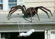 Huge Spider Halloween Front Porch Decorating. Human wrapped in spiderweb.