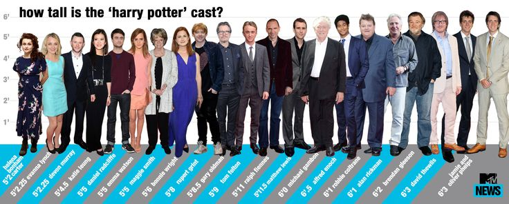 'Harry Potter' Height Chart: Who's The Tallest Actor?
