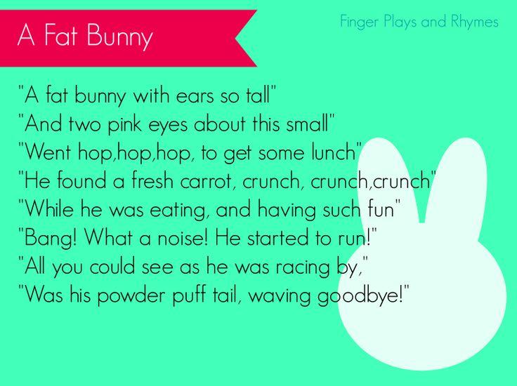 a fat bunny finger play for preschoolers