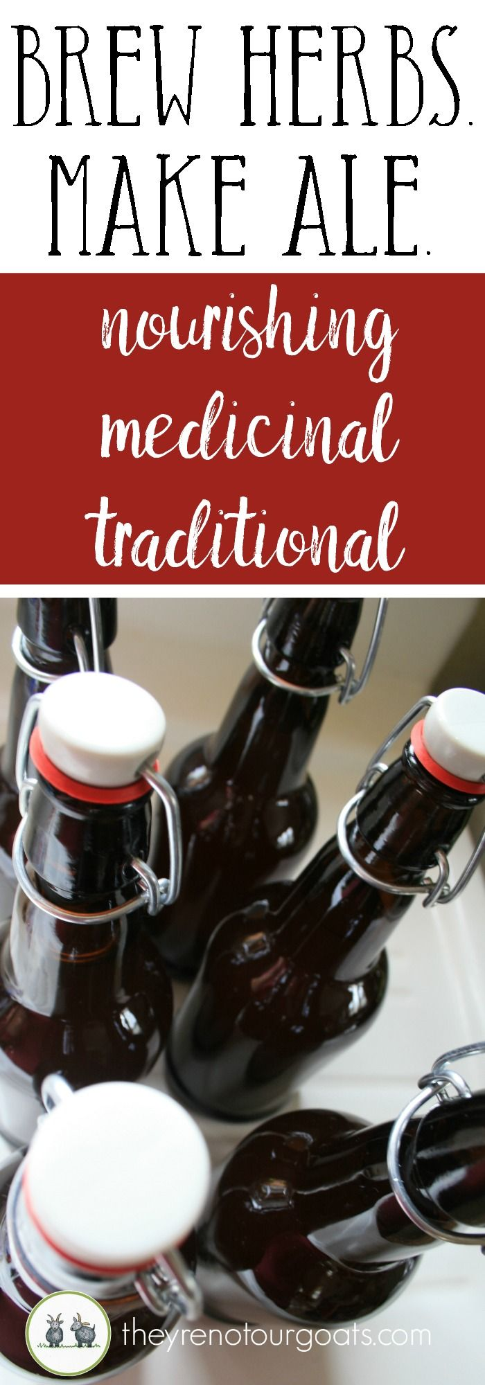 Make delicious & healthy herbal ale at home!