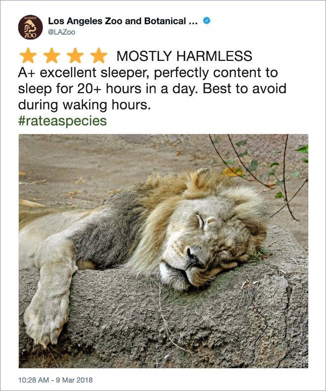 Zoo Creates Amazon Style Reviews About Animals Animals Zoo Los Angeles Zoo