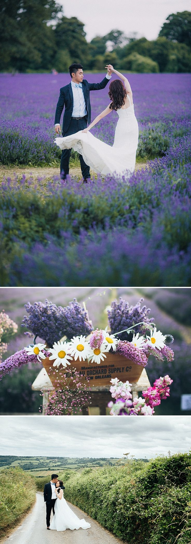 Pre wedding photo shoot in lavender fields