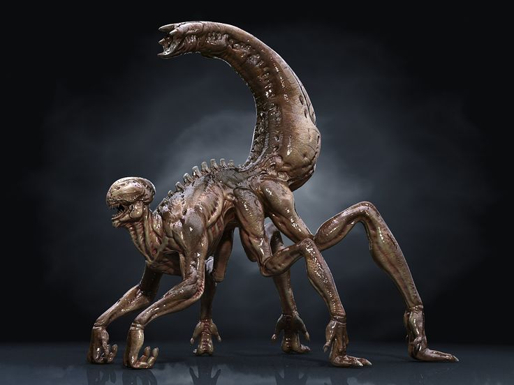 3D xenomorph hd