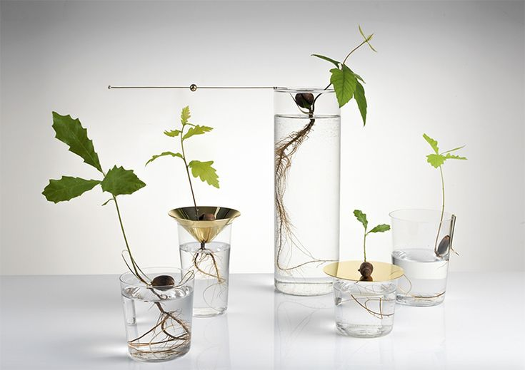 floating forest by Michael Anastassiades | AMM blog