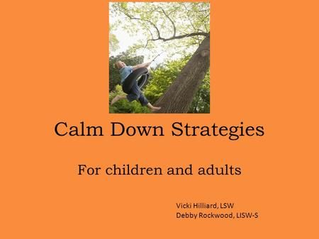 Calm Down Strategies For children and adults Vicki Hilliard, LSW Debby Rockwood, LISW-S.