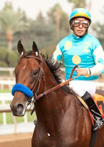 Horse Racing News in Photos