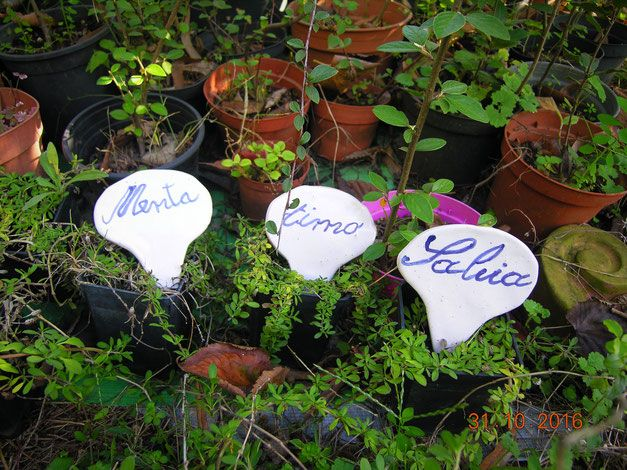 Targhette speziali in ceramica per vasi fatte interamente a mano Queste 3 etichette in ceramica per piante aromatiche, sono una fantastica idea regalo Prezzo 7,00 euro cad.una    http://www.leceramichedigabriella.com/shop-online/ceramiche-artistiche-creazioni-fatte-a-mano-varie/#cc-m-product-6683633363