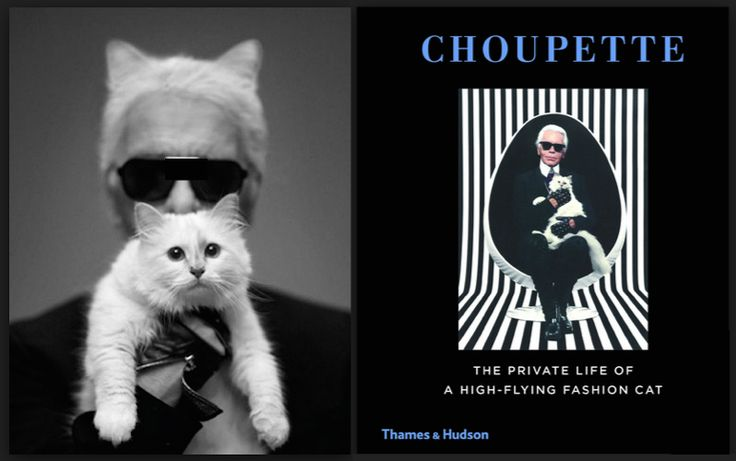 Choupette's getting her own book!