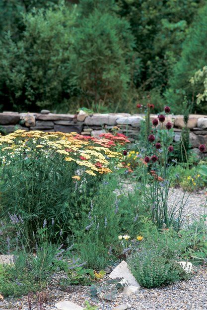 Learn techniques for gardening during a drought. Get tips for improving your soil, watering efficiently and more. Find out how to help your garden survive when water is scarce. Outdoor Planters, Outdoor Gardens, Cottage Garden Plan, Garden Design Magazine, Drought Tolerant Garden, Meadow Garden, Gravel Garden, Garden Plants, Gardening Magazines