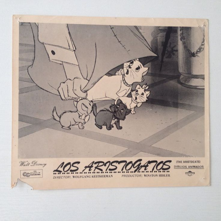 vtg 1970 Press Photo Disney Film The Aristocats Spanish Los Aristogatos  | eBay