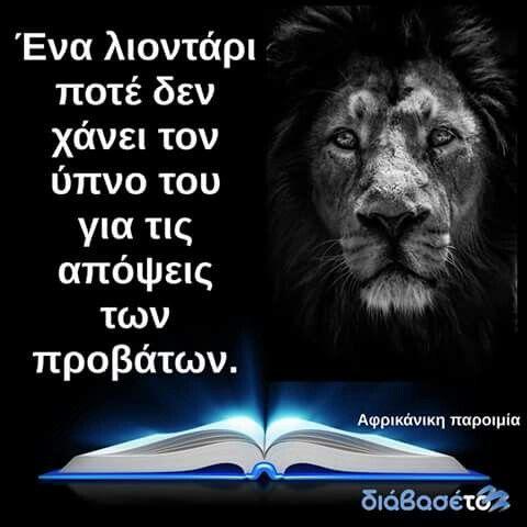Aυτη ειναι η γοητεια ενος λιονταριου
