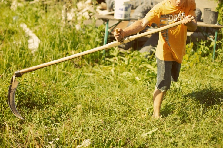 Just outside Timișoara, NFS Romania operates a small farm where survivors of human trafficking live on the property and maintain three greenhouses out of which they sell produce to local restaurants and catering companies. This creates an environment where survivors gain skills, earn an income, and provide themselves with an opportunity for a future.