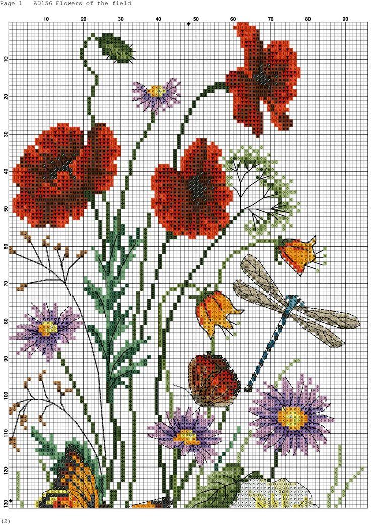 papoilas e borboletas