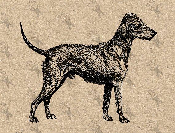 Vintage image Pug Dog Instant Download Digital by UnoPrint on Etsy