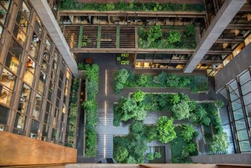 for emma, forever ago. — fineinteriors: Ford Foundation Atrium NYC. The...