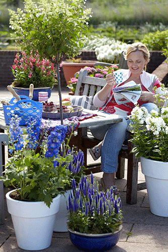 Met zoveel bonte vrolijkheid kan de zomer bijna niet meer tegenvallen. Grote potten met bloeiende vaste planten en heesters maken van het balkon en terras een gezellige verblijfplaats.